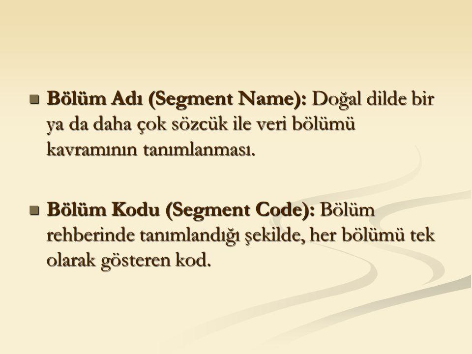 Bölüm Adı (Segment Name): Doğal dilde bir ya da daha çok sözcük ile veri bölümü kavramının tanımlanması. Bölüm Adı (Segment Name): Doğal dilde bir ya