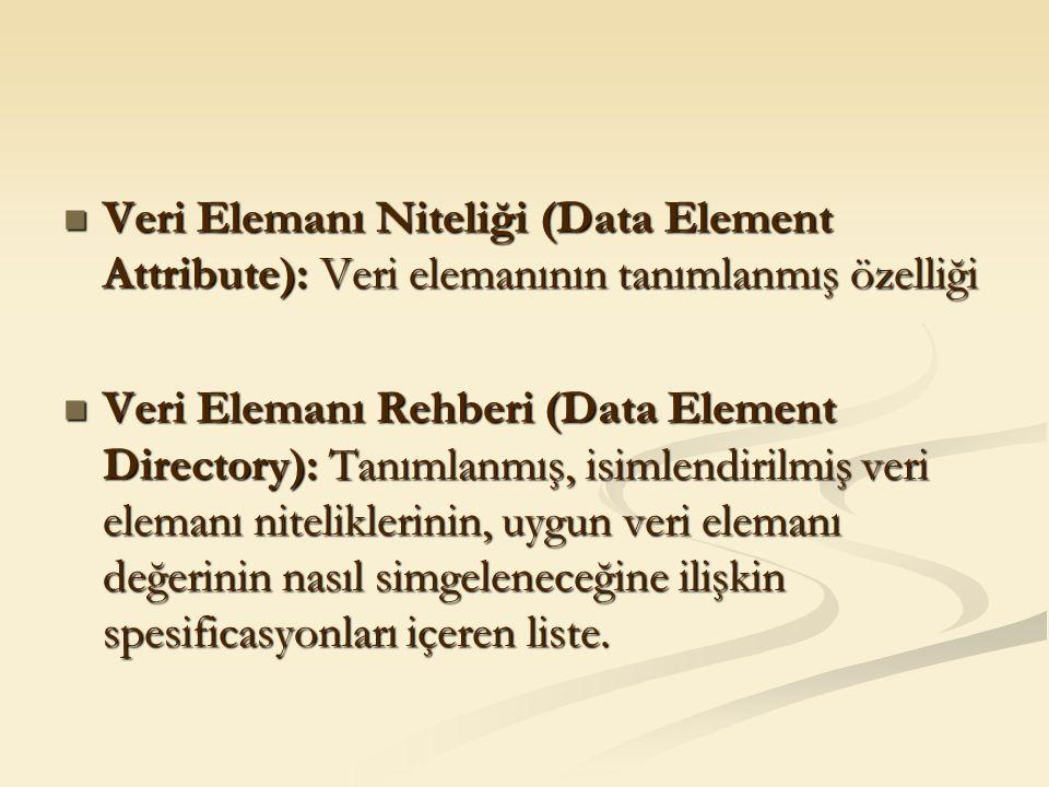 Veri Elemanı Niteliği (Data Element Attribute): Veri elemanının tanımlanmış özelliği Veri Elemanı Niteliği (Data Element Attribute): Veri elemanının t