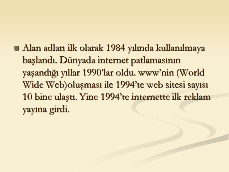 Alan adları ilk olarak 1984 yılında kullanılmaya başlandı. Dünyada internet patlamasının yaşandığı yıllar 1990'lar oldu. www'nin (World Wide Web)oluşm