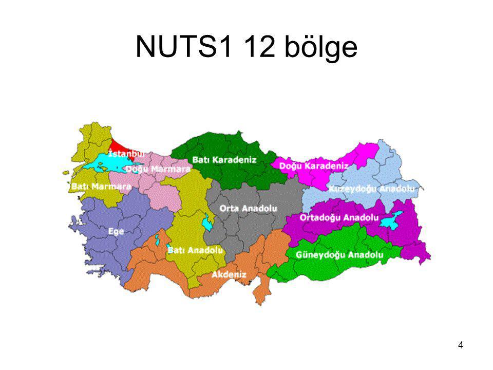 4 NUTS1 12 bölge