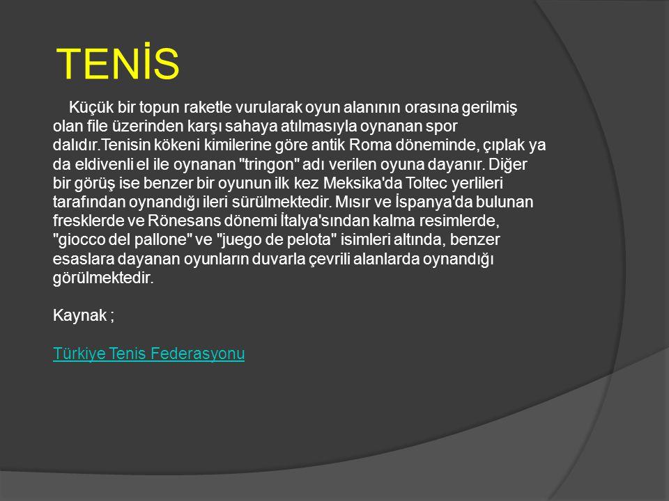 TENİS RESİMLERİ