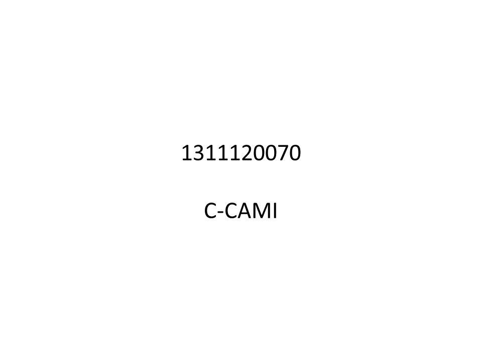 1311120070 C-CAMI