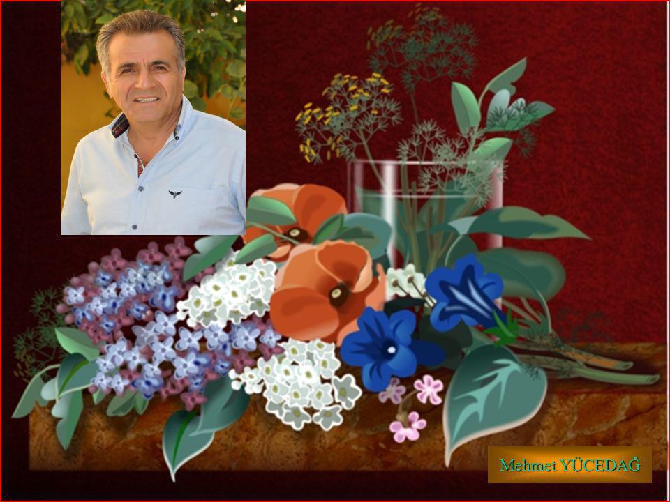 HİKMET SIRMA (ARİFİYE/SAKARYA) 1-A SINIFI 1 Mehmet YÜCEDAĞ