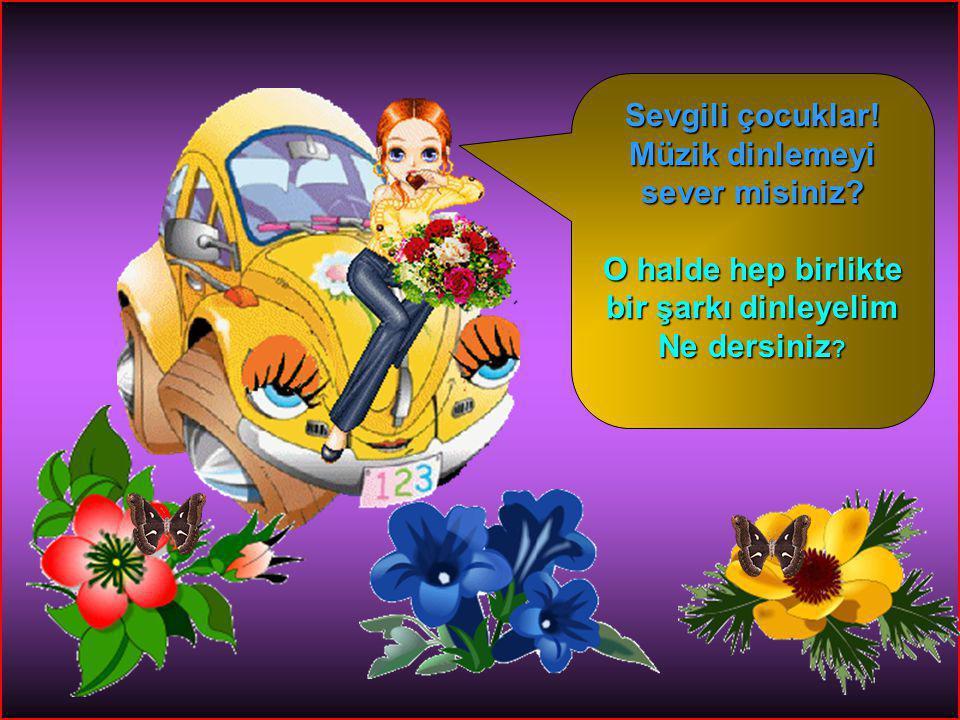 HİKMET SIRMA (ARİFİYE/SAKARYA) 1-A SINIFI 3 CiciKız