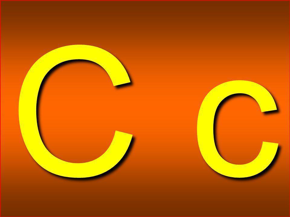 HİKMET SIRMA (ARİFİYE/SAKARYA) 1-A SINIFI 5 C c