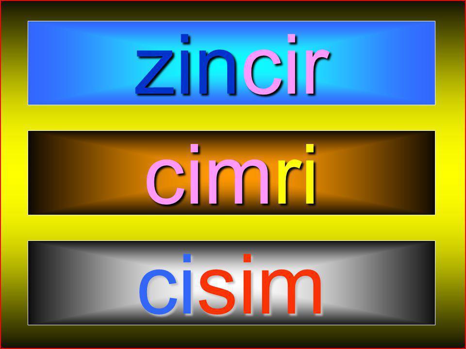 HİKMET SIRMA (ARİFİYE/SAKARYA) 1-A SINIFI 54 Giriş Toplantının amacını belirtin. Kendinizi tanıtın. zincir cimri cisim