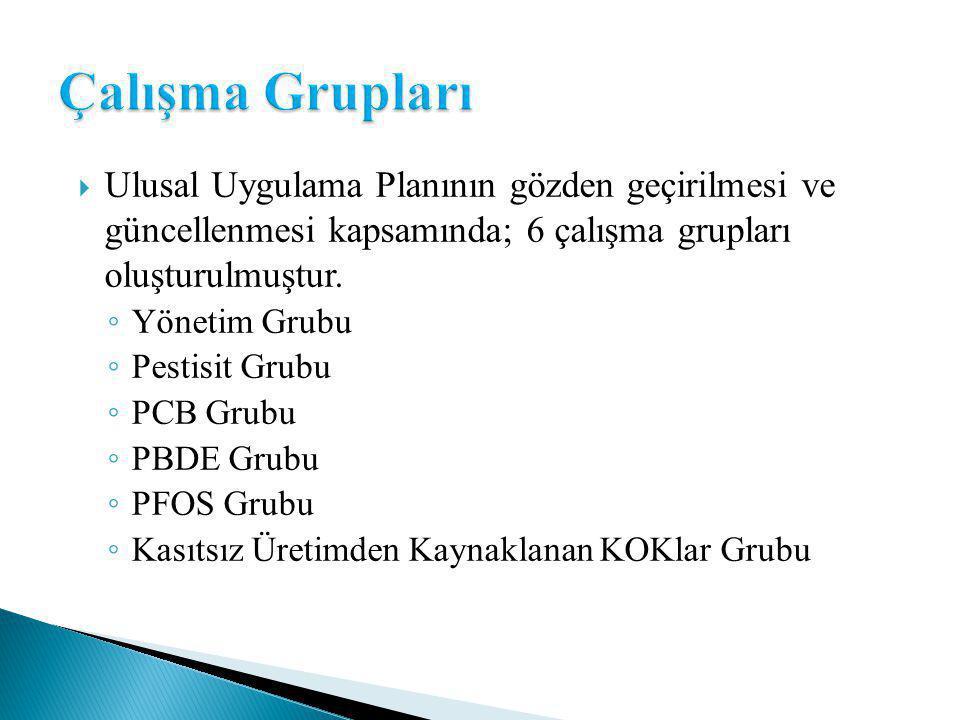  Ulusal Uygulama Planının gözden geçirilmesi ve güncellenmesi kapsamında; 6 çalışma grupları oluşturulmuştur.