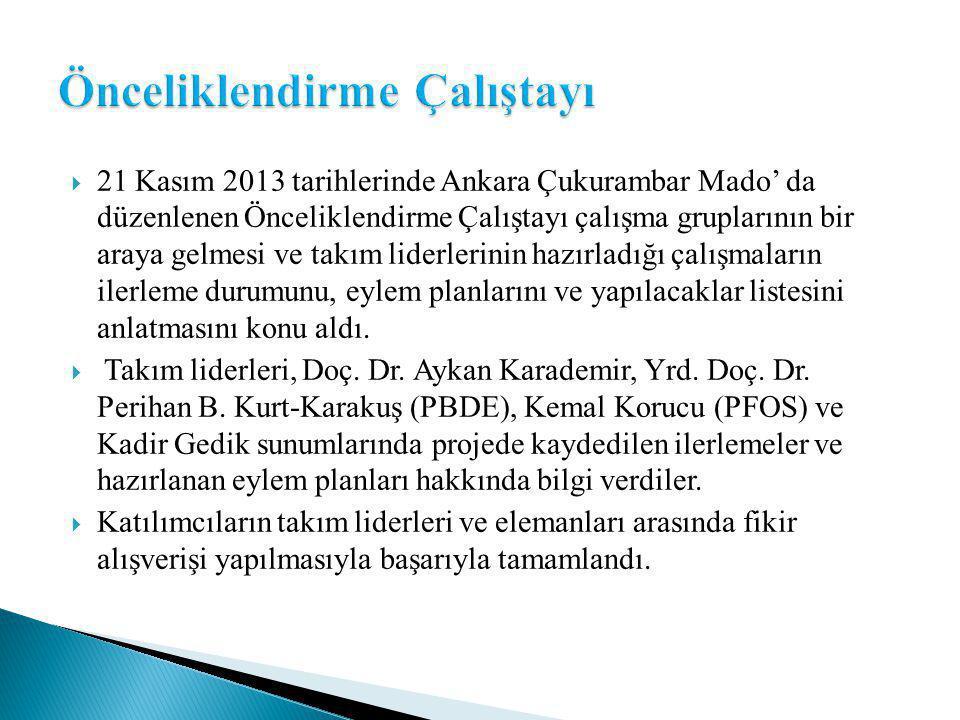  21 Kasım 2013 tarihlerinde Ankara Çukurambar Mado' da düzenlenen Önceliklendirme Çalıştayı çalışma gruplarının bir araya gelmesi ve takım liderlerinin hazırladığı çalışmaların ilerleme durumunu, eylem planlarını ve yapılacaklar listesini anlatmasını konu aldı.