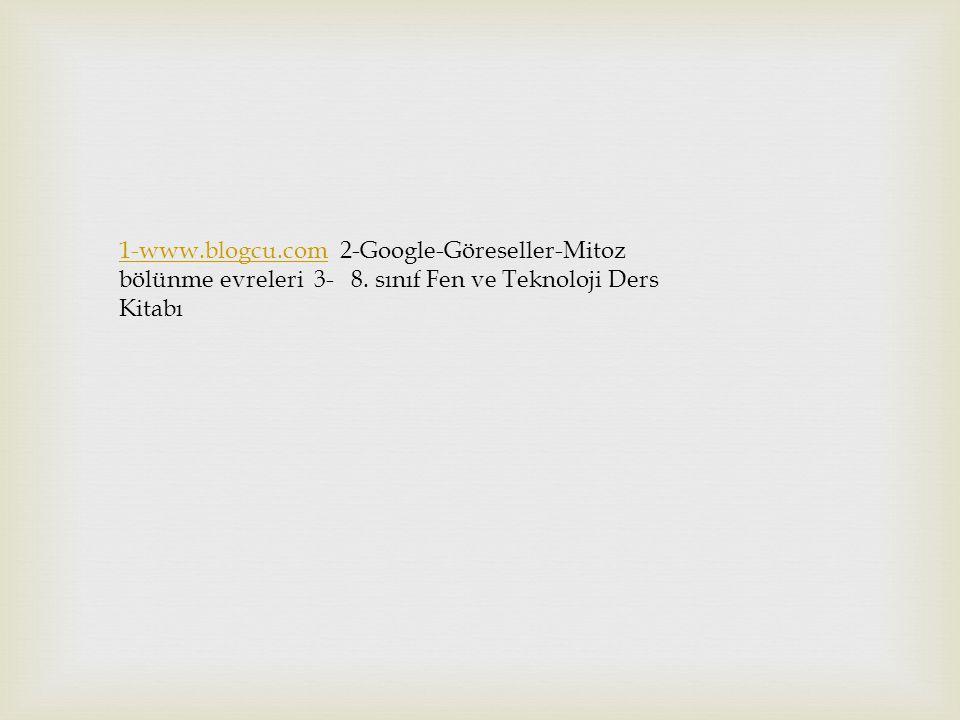 1-www.blogcu.com1-www.blogcu.com 2-Google-Göreseller-Mitoz bölünme evreleri 3- 8.