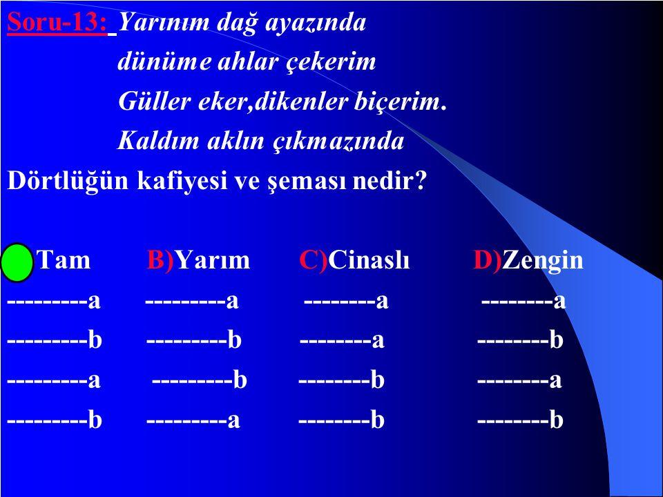 Cevap:B seçeneği Faruk nafiz çamlıbel