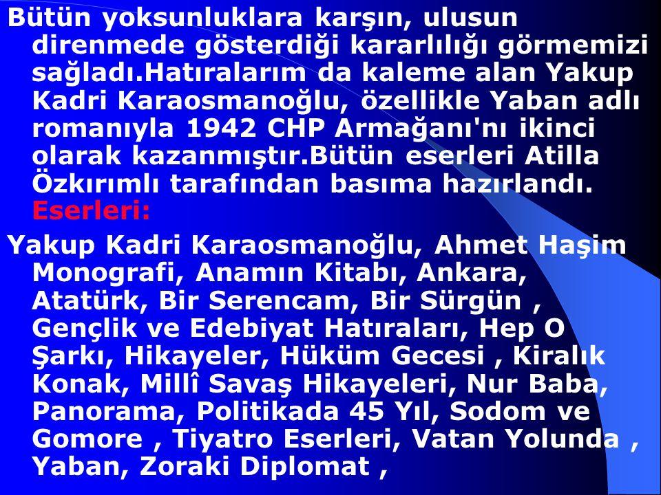 organlarında şiir ve hikayelerin yayımladı.Türk Yurdu, Yeni Mecmua, ikdam, Dergah ve Akşam'da yayımlanan yazılarıyla ün kazandı.Kurtuluş Savaşı başlar