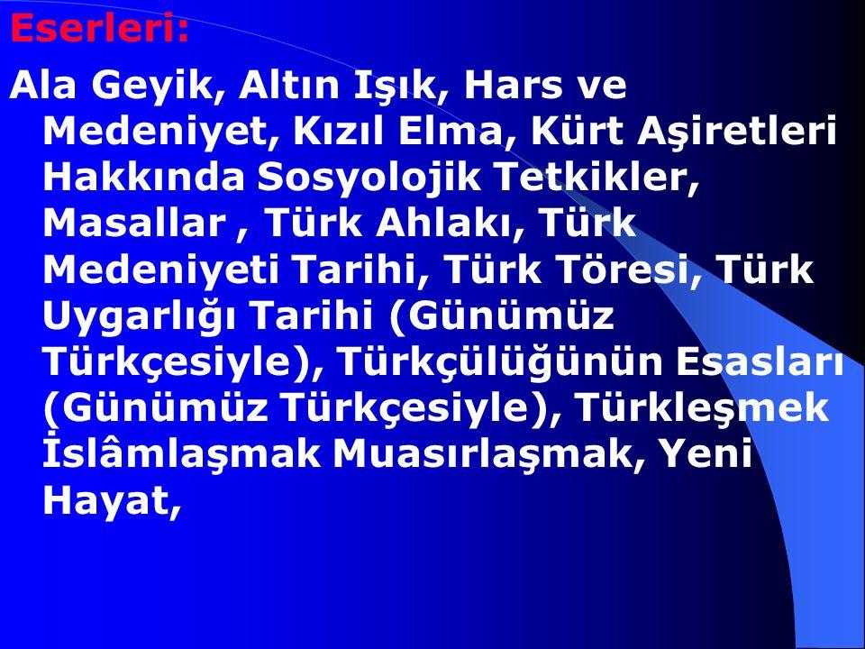 Yazılan Genç Kalemler (1911),Türk Yurdu (1912), Tanın, Türk Sözü ve Yeni Mecmua'da çıktı, şiirlerinin yanı sıra yazılarında dil,tarih ve toplumbilim k