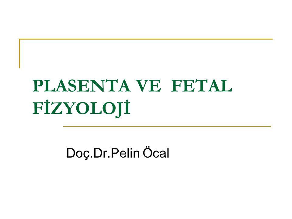 PLASENTA VE FETAL FİZYOLOJİ Doç.Dr.Pelin Öcal
