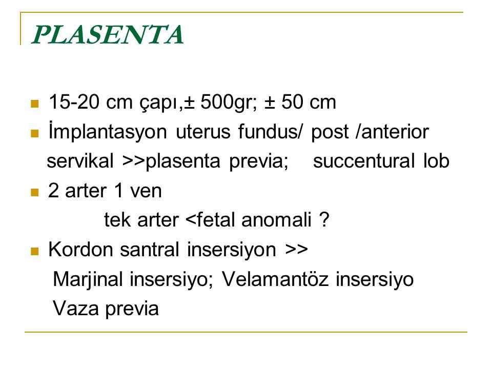 15-20 cm çapı,± 500gr; ± 50 cm İmplantasyon uterus fundus/ post /anterior servikal >>plasenta previa; succentural lob 2 arter 1 ven tek arter <fetal a