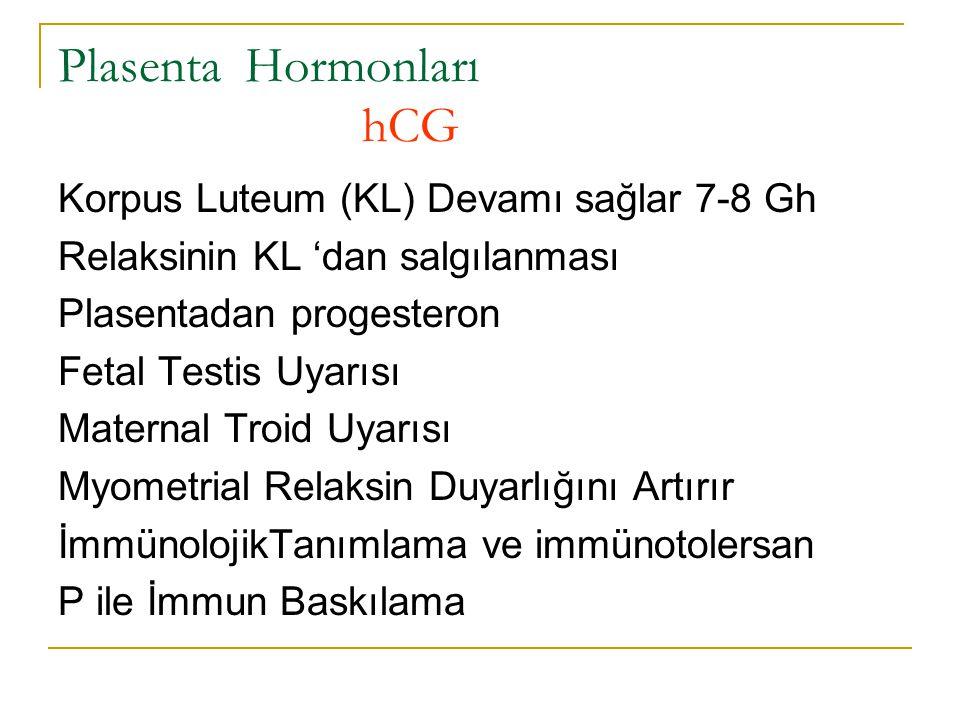 Plasenta Hormonları hCG Korpus Luteum (KL) Devamı sağlar 7-8 Gh Relaksinin KL 'dan salgılanması Plasentadan progesteron Fetal Testis Uyarısı Maternal