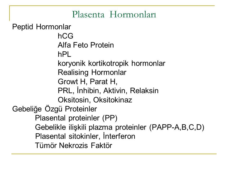 Plasenta Hormonları Peptid Hormonlar hCG Alfa Feto Protein hPL koryonik kortikotropik hormonlar Realising Hormonlar Growt H, Parat H, PRL, İnhibin, Ak