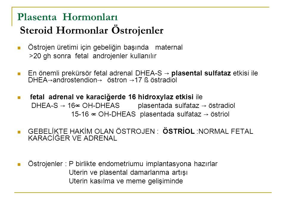 Plasenta Hormonları Steroid Hormonlar Östrojenler Östrojen üretimi için gebeliğin başında maternal >20 gh sonra fetal androjenler kullanılır En önemli