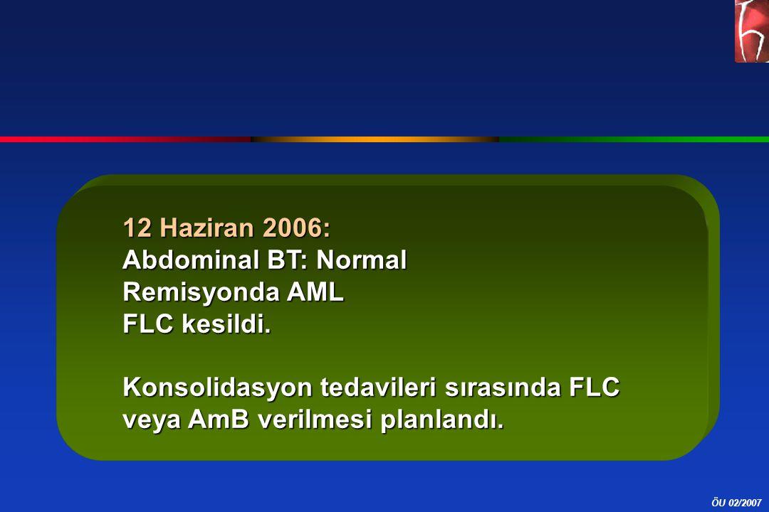 12 Haziran 2006: Abdominal BT: Normal Remisyonda AML FLC kesildi. Konsolidasyon tedavileri sırasında FLC veya AmB verilmesi planlandı.