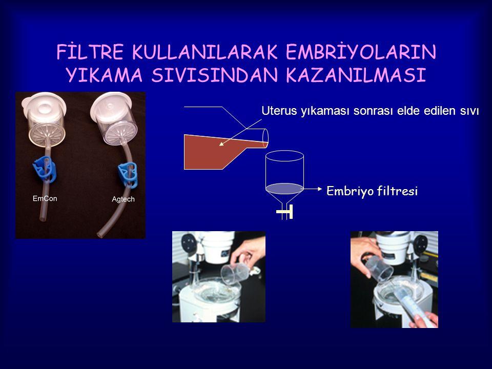 FİLTRE KULLANILARAK EMBRİYOLARIN YIKAMA SIVISINDAN KAZANILMASI Embriyo filtresi Uterus yıkaması sonrası elde edilen sıvı