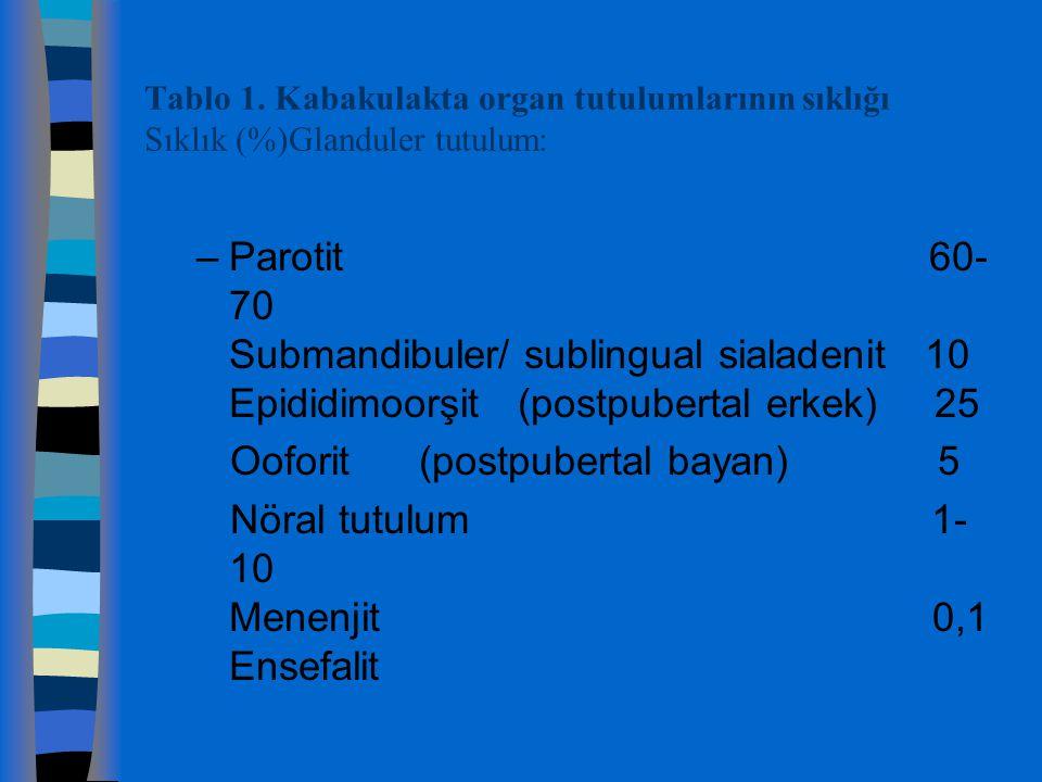 Tablo 1. Kabakulakta organ tutulumlarının sıklığı Sıklık (%)Glanduler tutulum: –Parotit 60- 70 Submandibuler/ sublingual sialadenit 10 Epididimoorşit