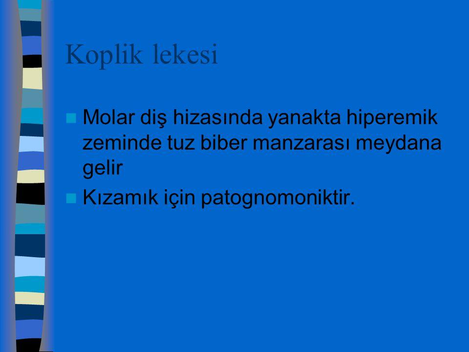 KOPLİK LEKELERİ