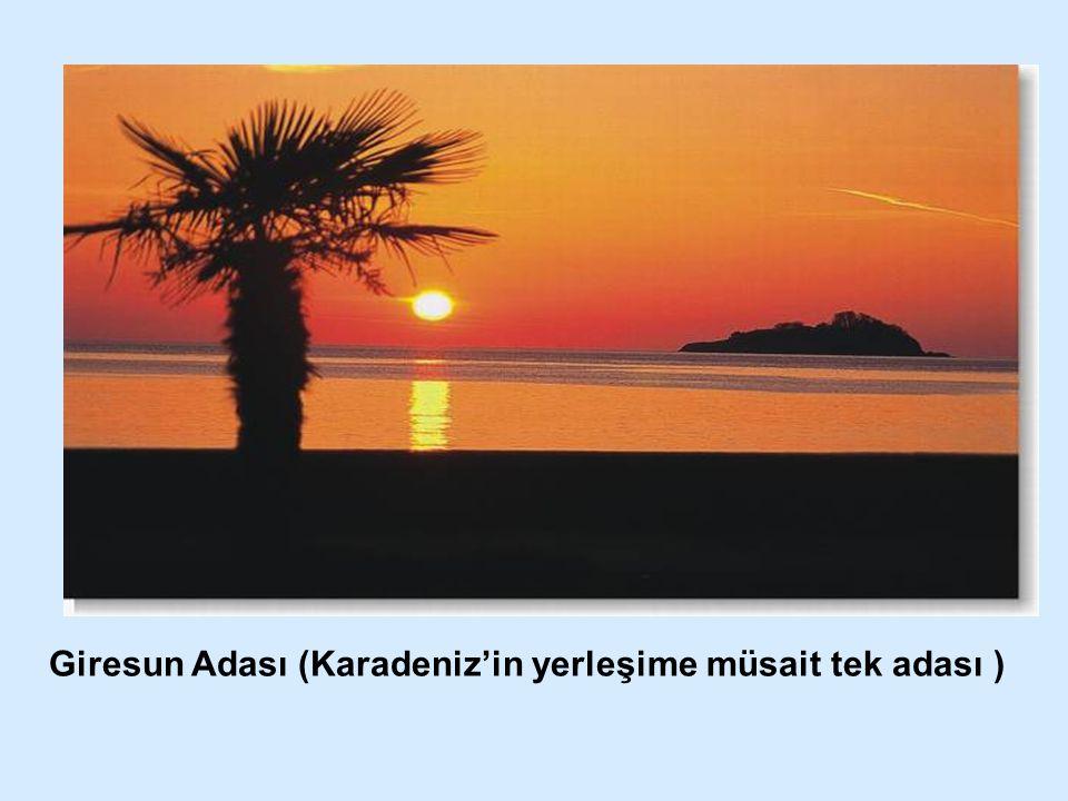 Giresun Adası (Karadeniz'in yerleşime müsait tek adası )