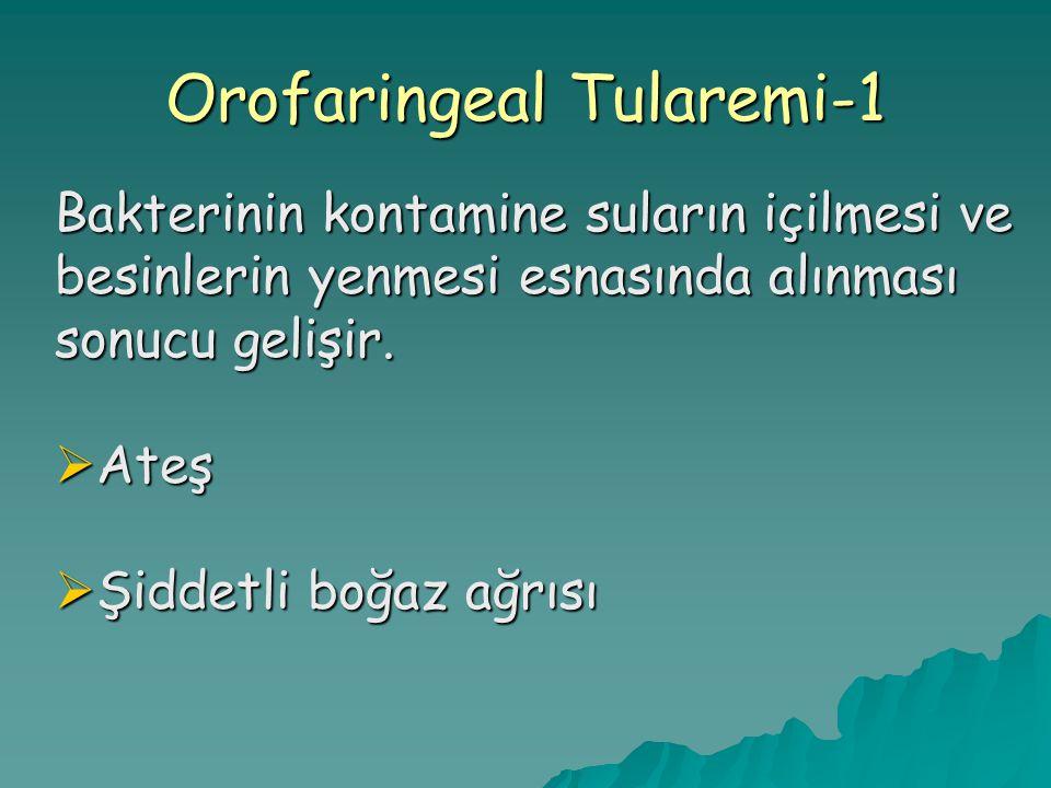Orofaringeal Tularemi-1 Bakterinin kontamine suların içilmesi ve besinlerin yenmesi esnasında alınması sonucu gelişir.  Ateş  Şiddetli boğaz ağrısı