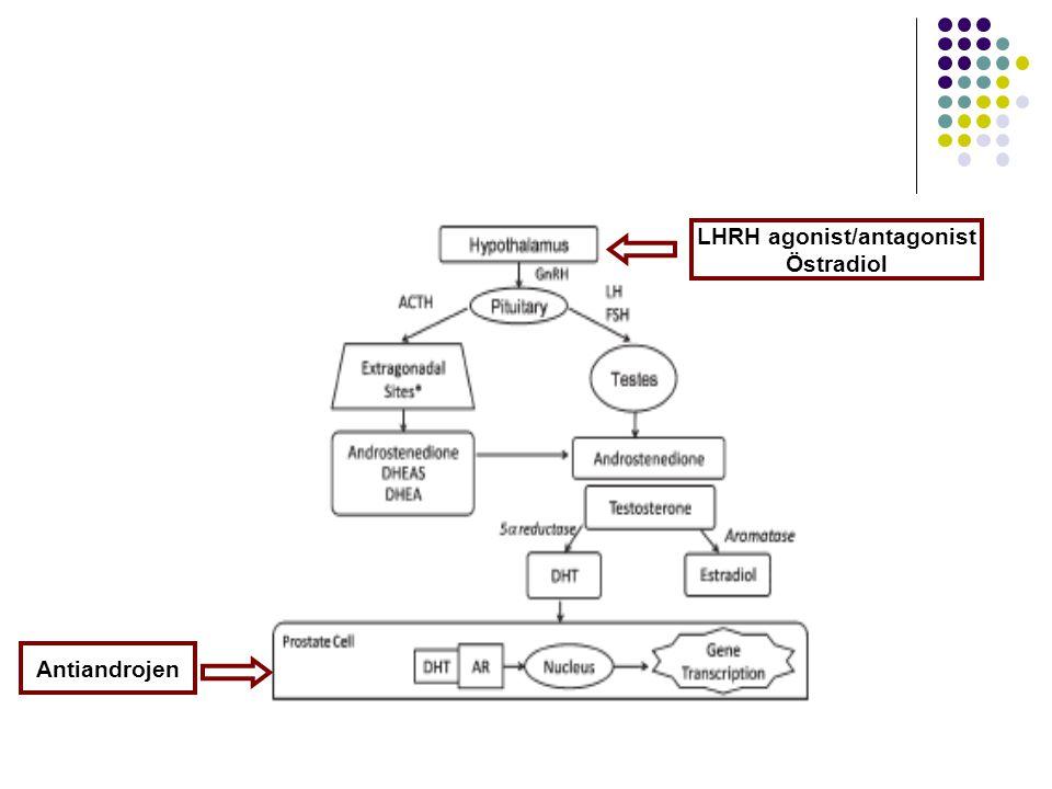 LHRH agonist/antagonist Östradiol Antiandrojen