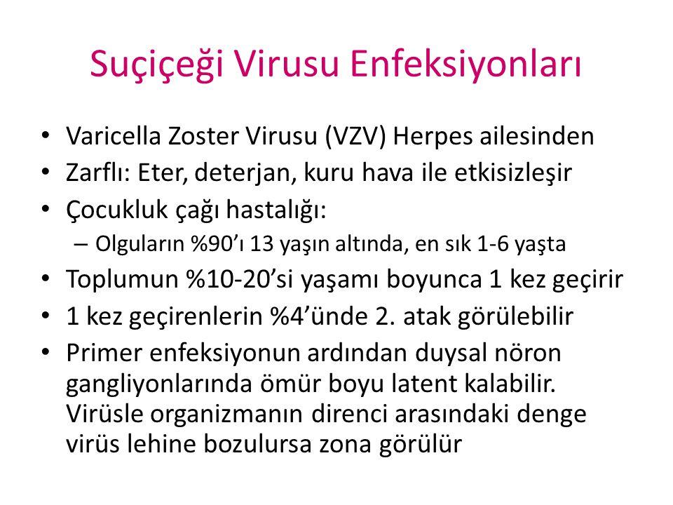 Suçiçeği Virusu Enfeksiyonları Varicella Zoster Virusu (VZV) Herpes ailesinden Zarflı: Eter, deterjan, kuru hava ile etkisizleşir Çocukluk çağı hastal