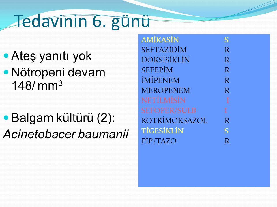 Tedavinin 6. günü Ateş yanıtı yok Nötropeni devam 148/ mm 3 Balgam kültürü (2): Acinetobacer baumanii AMİKASİN S SEFTAZİDİM R DOKSİSİKLİN R SEFEPİM R