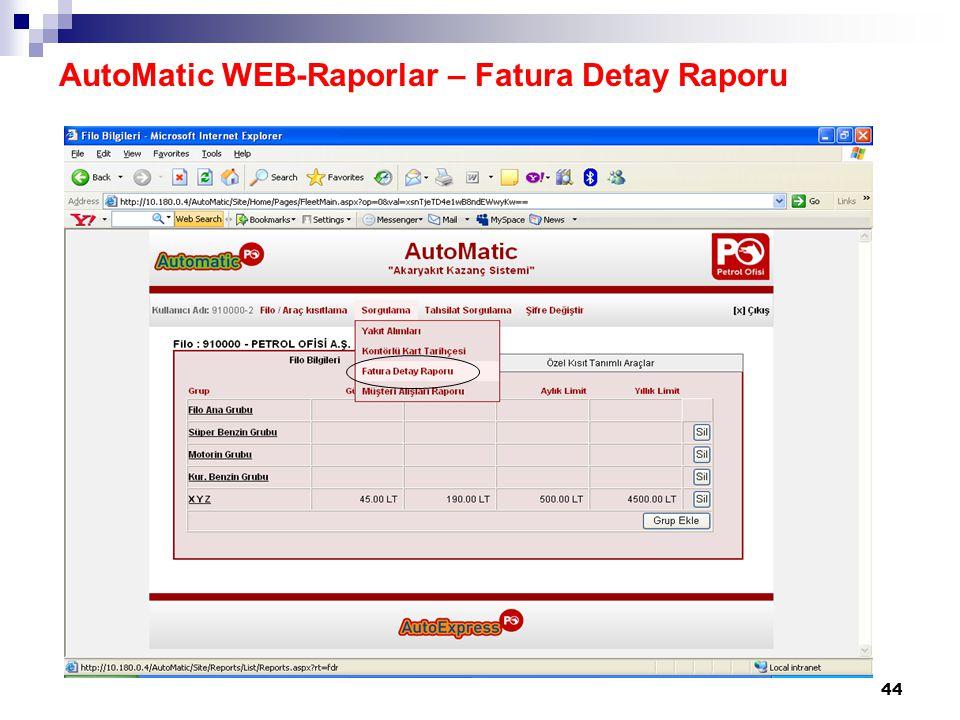 44 AutoMatic WEB-Raporlar – Fatura Detay Raporu
