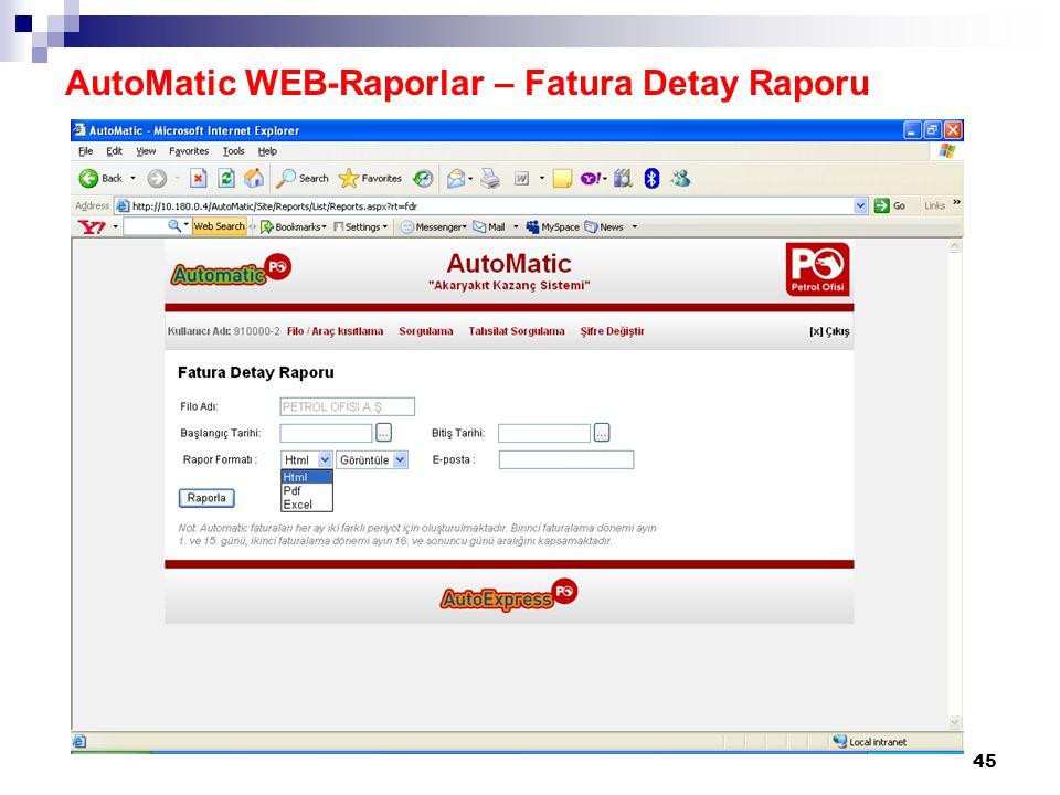 46 AutoMatic WEB-Raporlar – Fatura Detay Raporu