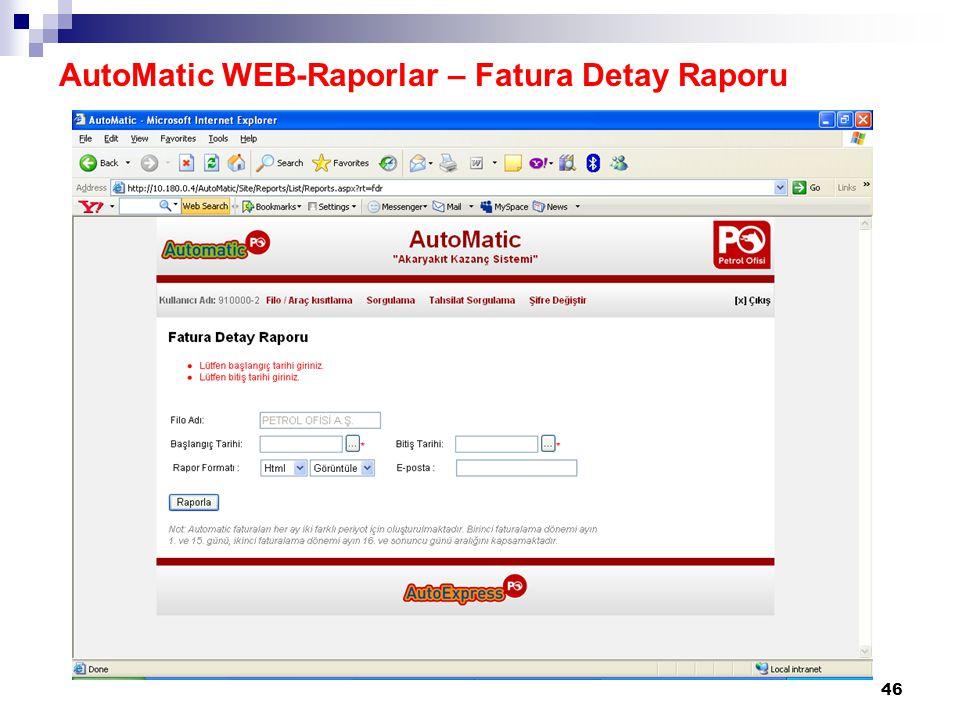 47 AutoMatic WEB-Raporlar – Fatura Detay Raporu