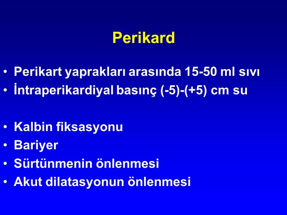 Perikard Perikart yaprakları arasında 15-50 ml sıvı İntraperikardiyal basınç (-5)-(+5) cm su Kalbin fiksasyonu Bariyer Sürtünmenin önlenmesi Akut dila