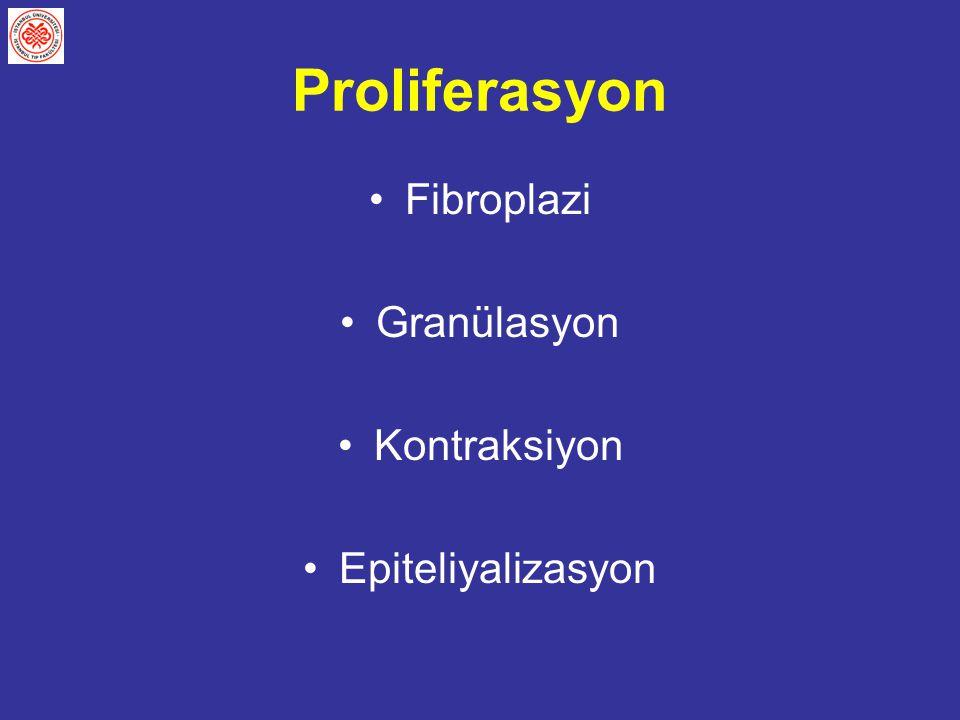 Proliferasyon Fibroplazi Granülasyon Kontraksiyon Epiteliyalizasyon
