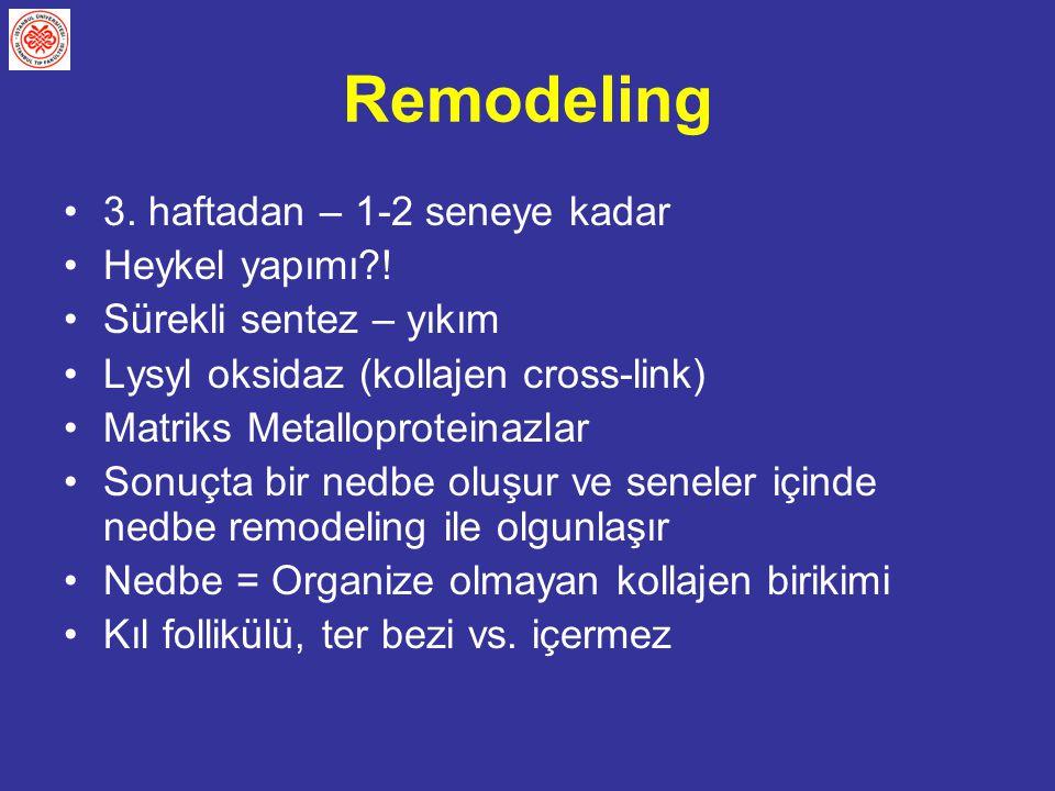Remodeling 3. haftadan – 1-2 seneye kadar Heykel yapımı?! Sürekli sentez – yıkım Lysyl oksidaz (kollajen cross-link) Matriks Metalloproteinazlar Sonuç