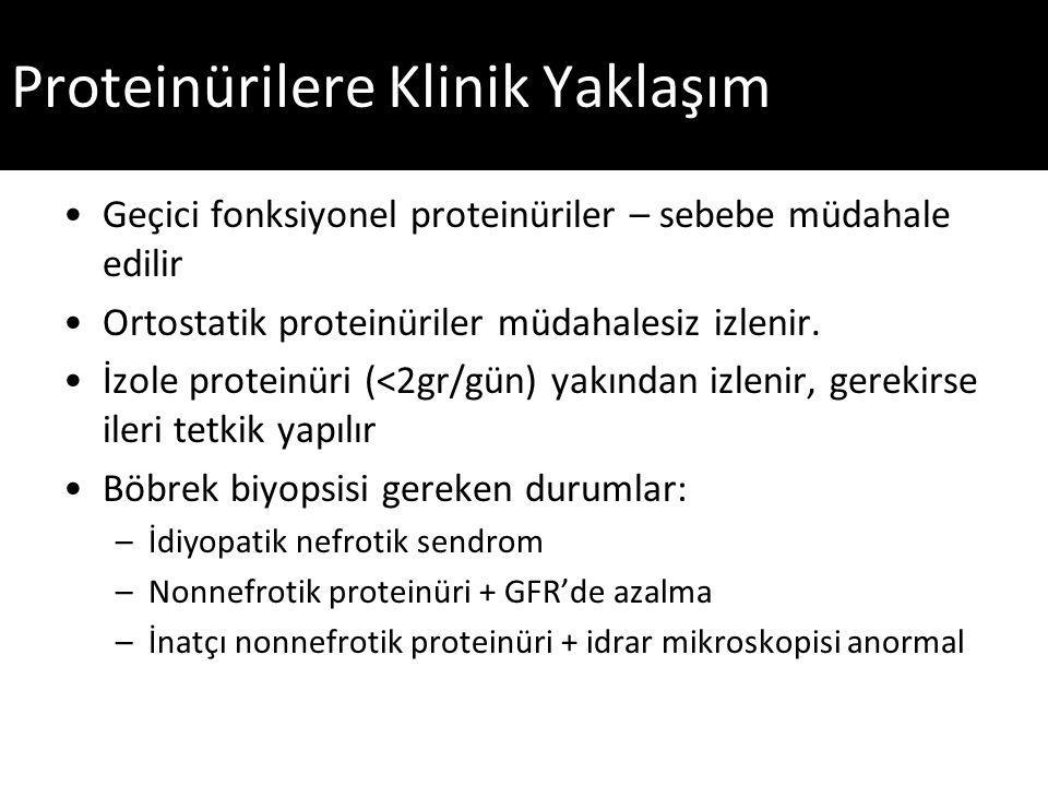 Proteinürilere Klinik Yaklaşım Geçici fonksiyonel proteinüriler – sebebe müdahale edilir Ortostatik proteinüriler müdahalesiz izlenir.