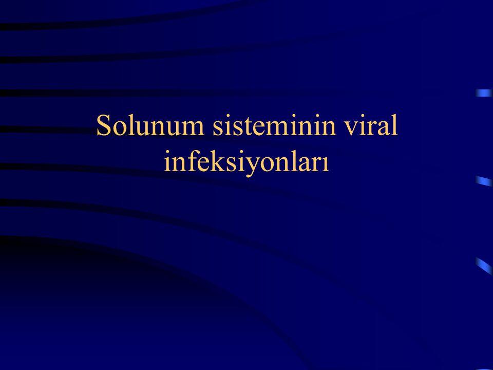 Solunum sisteminin viral infeksiyonları