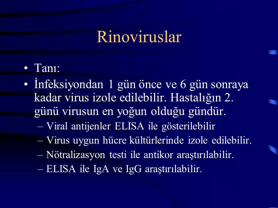 Rinoviruslar Tanı: İnfeksiyondan 1 gün önce ve 6 gün sonraya kadar virus izole edilebilir. Hastalığın 2. günü virusun en yoğun olduğu gündür. –Viral a