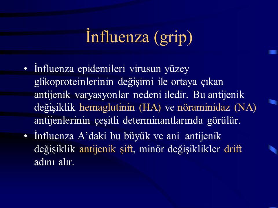 İnfluenza (grip) İnfluenza epidemileri virusun yüzey glikoproteinlerinin değişimi ile ortaya çıkan antijenik varyasyonlar nedeni iledir. Bu antijenik