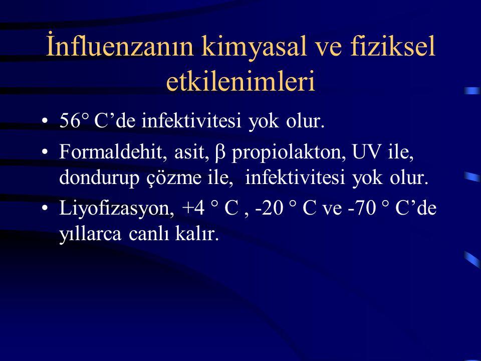 İnfluenzanın kimyasal ve fiziksel etkilenimleri 56° C'de infektivitesi yok olur. Formaldehit, asit,  propiolakton, UV ile, dondurup çözme ile, infekt