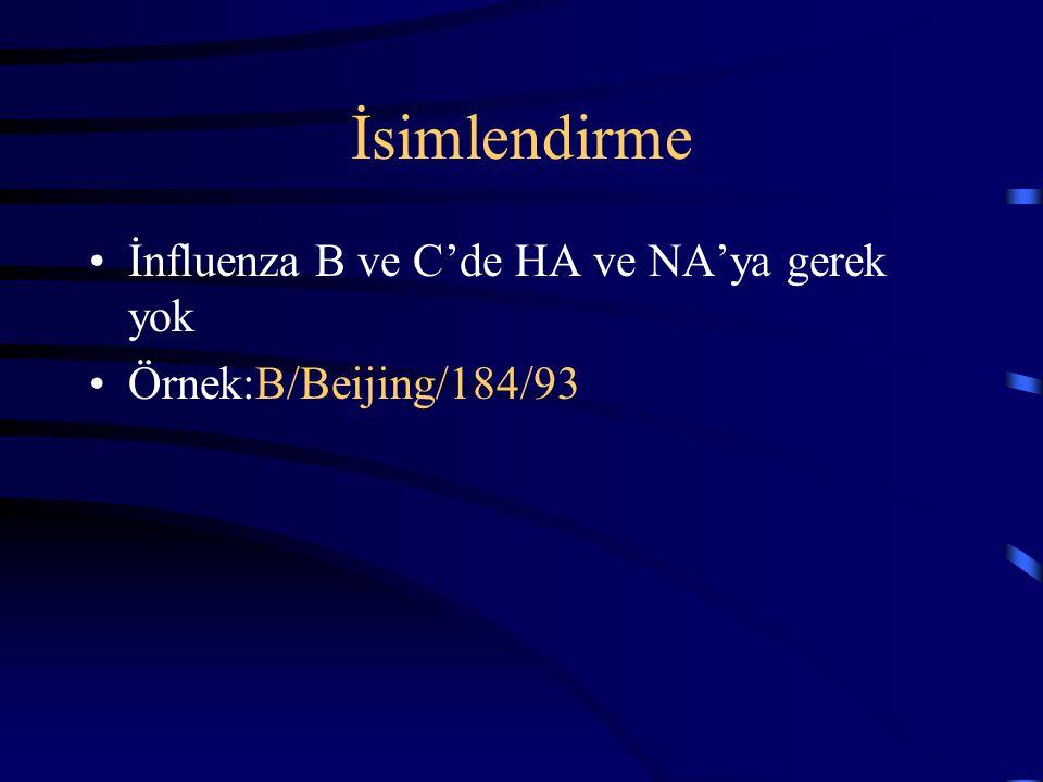 İsimlendirme İnfluenza B ve C'de HA ve NA'ya gerek yok Örnek:B/Beijing/184/93