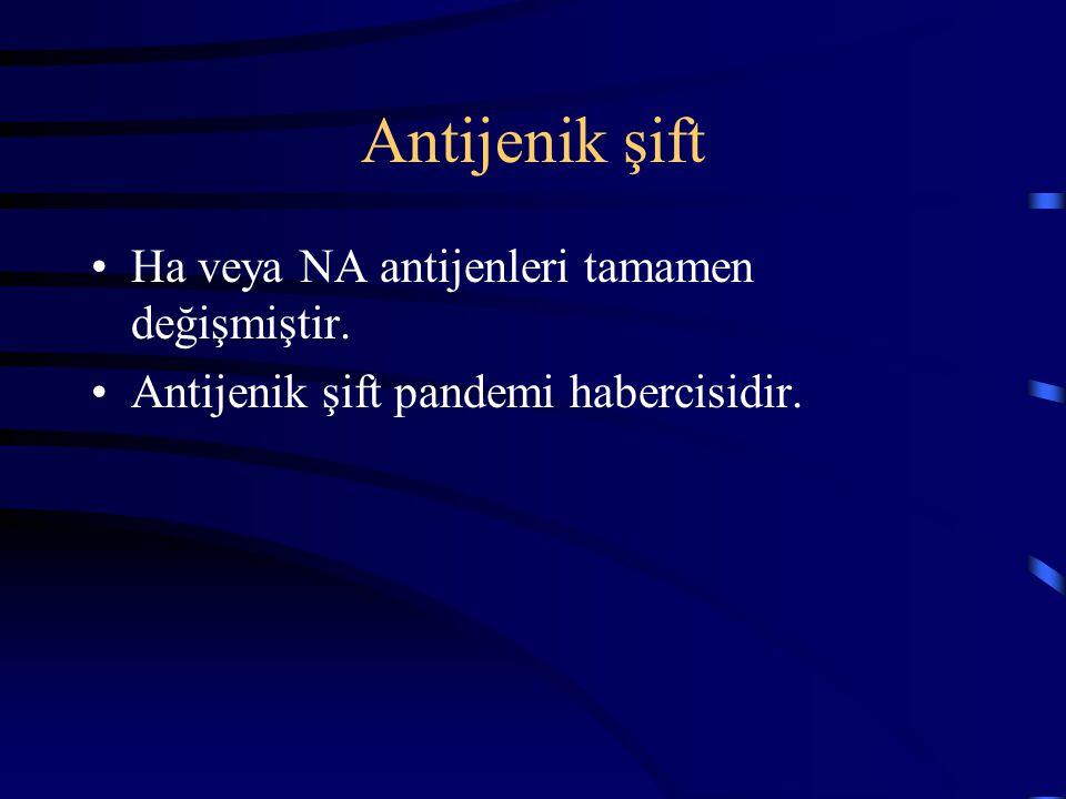 Antijenik şift Ha veya NA antijenleri tamamen değişmiştir. Antijenik şift pandemi habercisidir.