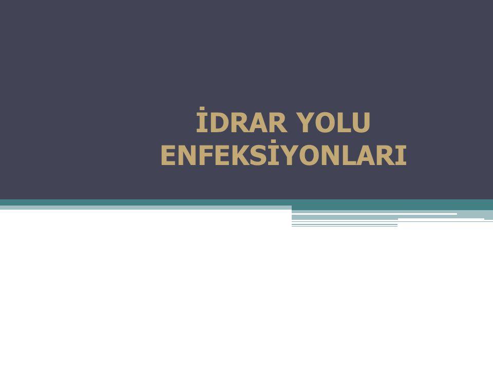İDRAR YOLU ENFEKSİYONLARI