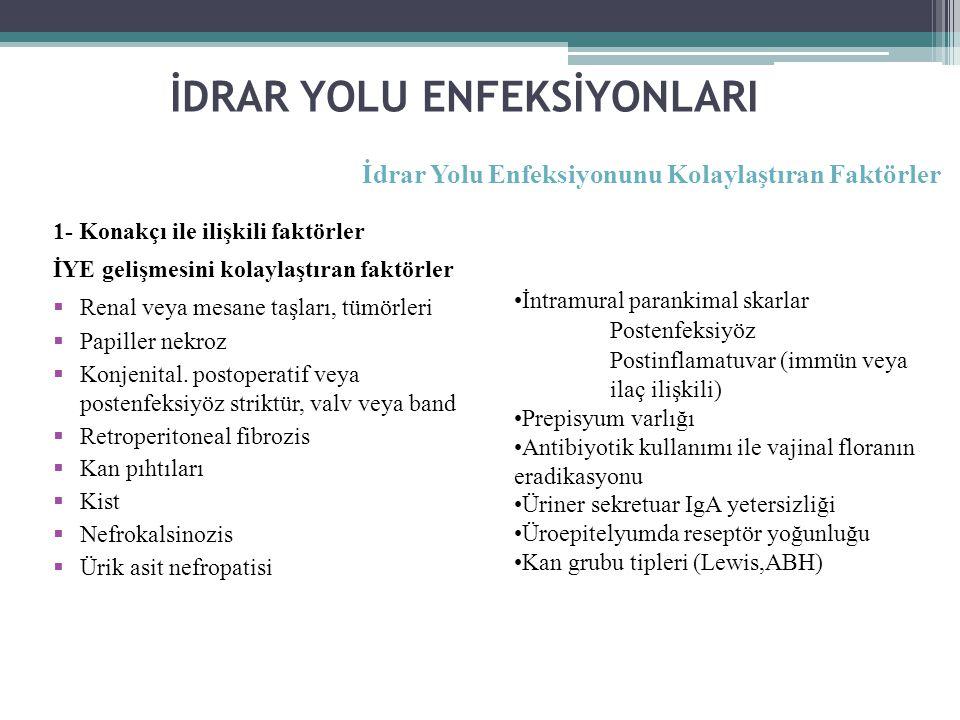 İDRAR YOLU ENFEKSİYONLARI 1- Konakçı ile ilişkili faktörler İYE gelişmesini kolaylaştıran faktörler  Renal veya mesane taşları, tümörleri  Papiller