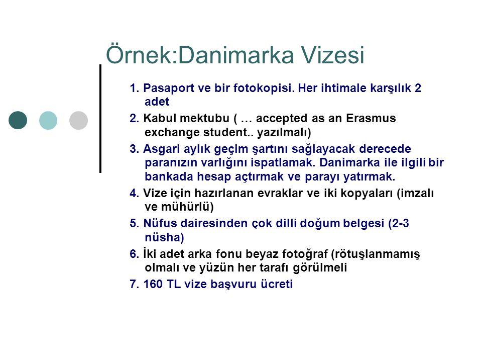 Örnek:Danimarka Vizesi 1. Pasaport ve bir fotokopisi.