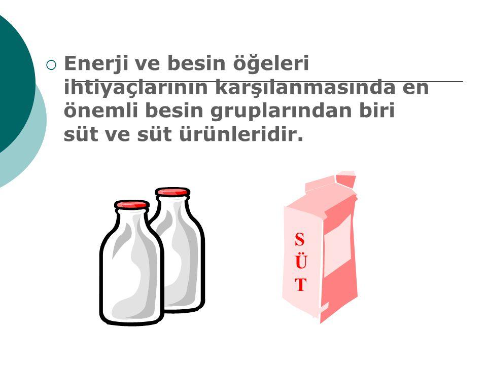  Enerji ve besin öğeleri ihtiyaçlarının karşılanmasında en önemli besin gruplarından biri süt ve süt ürünleridir. SÜTSÜT SÜTSÜT