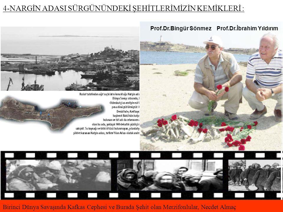 4-NARGİN ADASI SÜRGÜNÜNDEKİ ŞEHİTLERİMİZİN KEMİKLERİ : Birinci Dünya Savaşında Kafkas Cephesi ve Burada Şehit olan Merzifonlular, Necdet Almaç Prof.Dr.Bingür Sönmez Prof.Dr.İbrahim Yıldırım