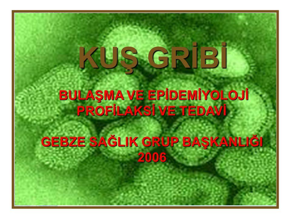 BULAŞMA VE EPİDEMİYOLOJİ Avian influenza, ortomiksoviride ailesinden influenza grubuna ait RNA genetik materyali bulunan influenza A virüsüdür.