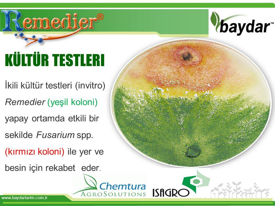www.baydartarim.com.tr İkili kültür testleri (invitro) Remedier (yeşil koloni) yapay ortamda etkili bir sekilde Fusarium spp. (kırmızı koloni) ile yer